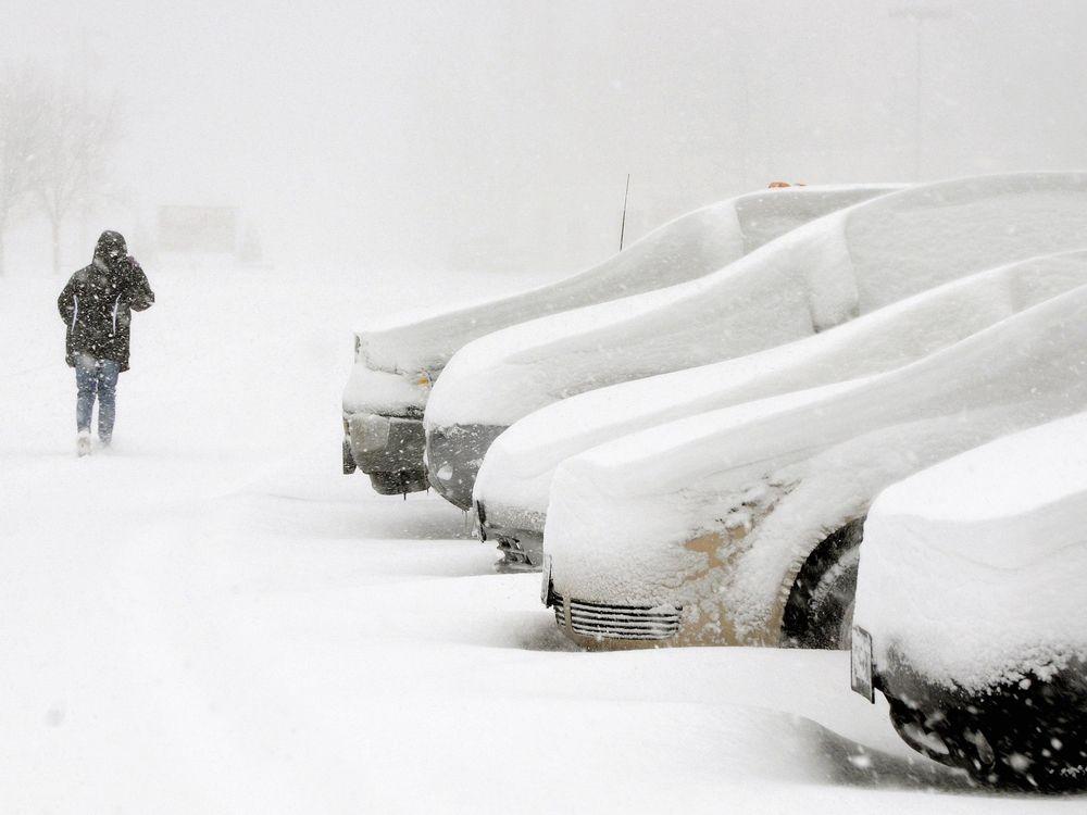 snow-buried cars