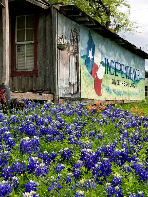 Springtime in Texas thumbnail