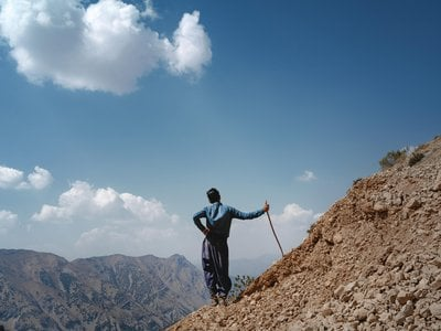 Pourang Mokhtari watches over the family's goats and sheep high in the Zagros Mountains.