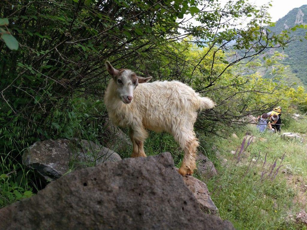How Armenia Plans to Become the Next World-Class Hiking Destination