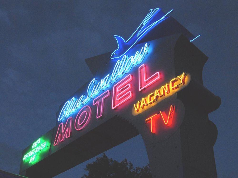 neon-blue-swallow.jpg