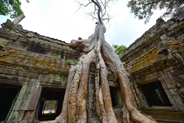 Angkor wat thumbnail