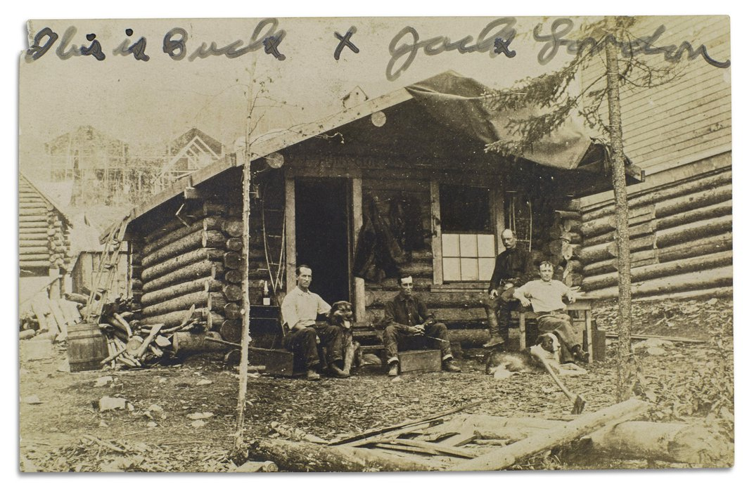 Gold Fever! Deadly Cold! And the Amazing True Adventures of Jack London in the Wild