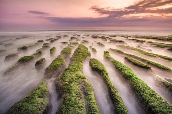 Green Labyrinth thumbnail
