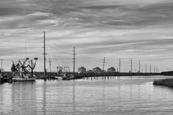 Port of shrimps thumbnail