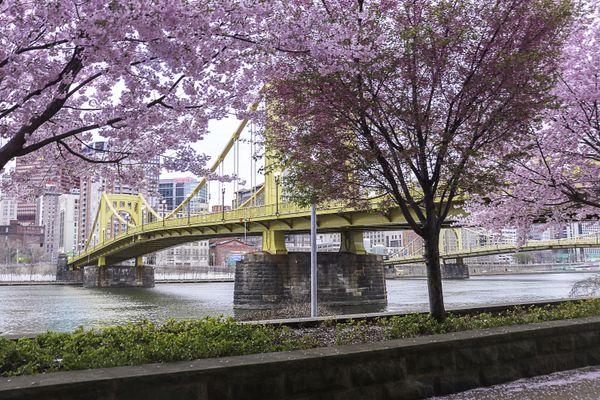 The Andy Warhol Bridge in Pittsburgh thumbnail
