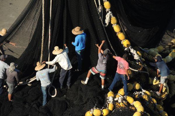 Stacking Giant Fishing Nets in Mazatlan thumbnail
