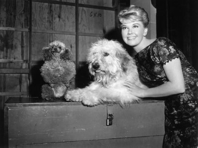 American actor Doris Day with mutt co-star Hobo on the set of director Charles Walters's film, 'Please Don't Eat the Daisies'.