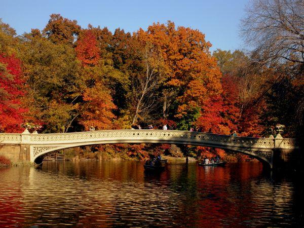 Bow Bridge - Central Park thumbnail