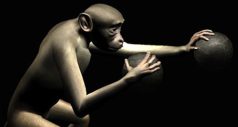 virtual monkey
