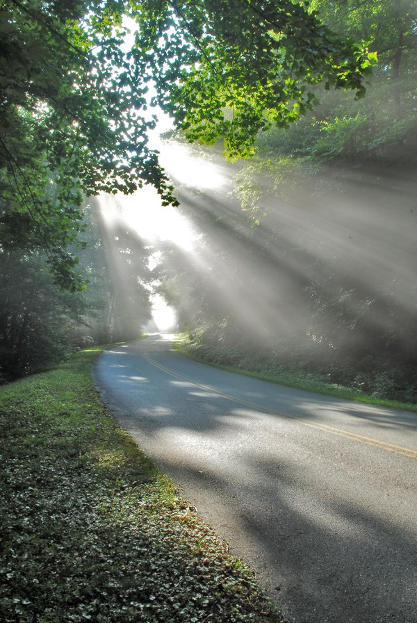Morning sunbeams on the Blue Ridge Parkway thumbnail