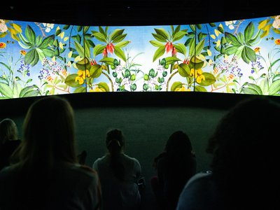 Vivid colors and images splash across a five-panel screen, bringing Joseph Banks and James Cook's voyage to life