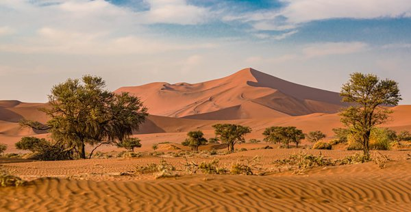 The Dunes at Sossusvlei thumbnail