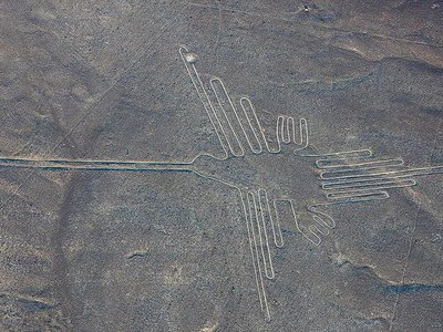 This geoglyph, previously identified as a hummingbird, actually depicts a hermit, a subgroup of hummingbird known to live in the forested regions of northern and eastern Peru
