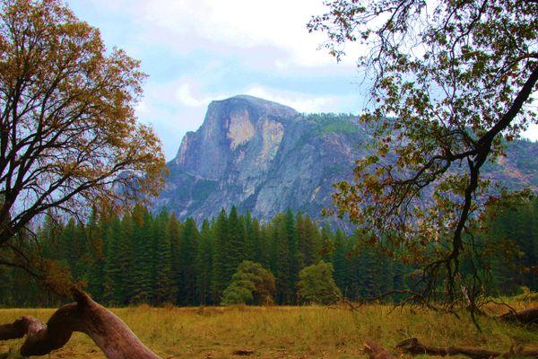 Walking in Yosemite thumbnail