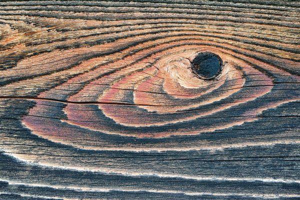 Weathered Wood Abstraction (Fish) thumbnail