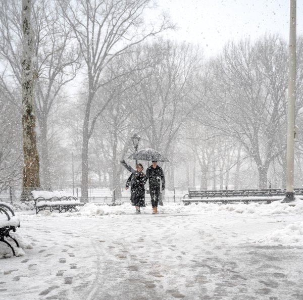 Couple Strolling in a Snowstorm, Central Park thumbnail