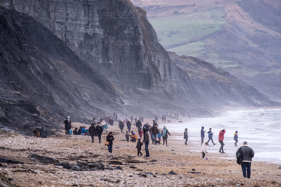 Why the Jurassic Coast Is One of the Best Fossil-Collecting Sites on Earth