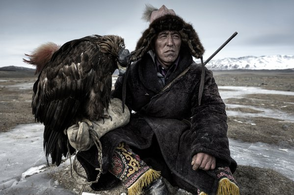 An Eagle Hunter on the Steppe in Mongolia rests with his Golden Eagle ... thumbnail