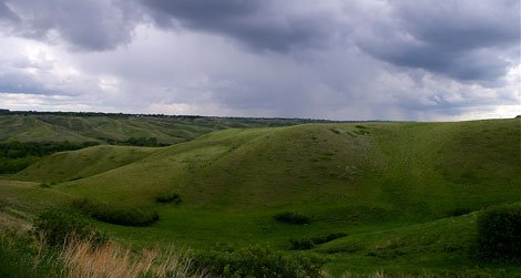 The land where the Clovis once hunted.