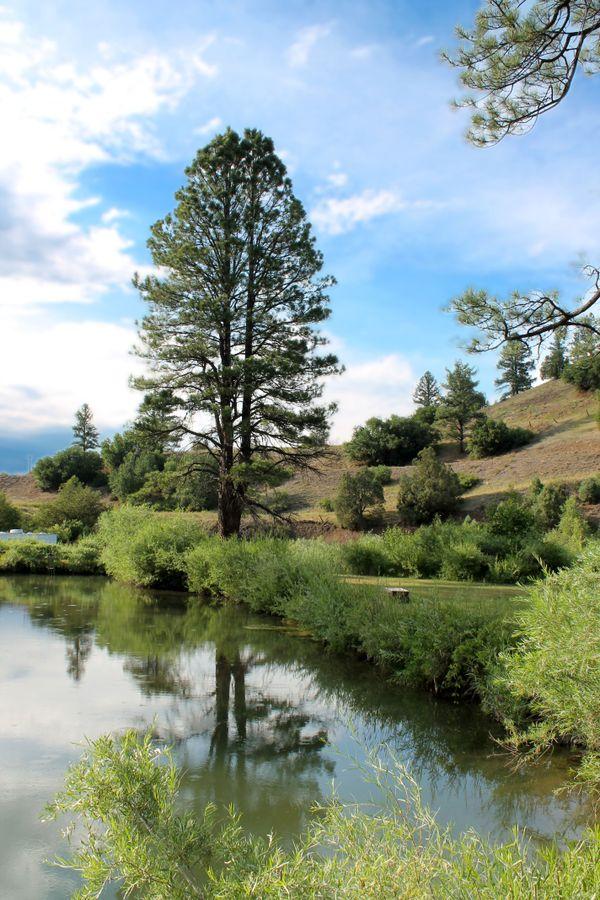 The pond at the Last Resort RV park thumbnail
