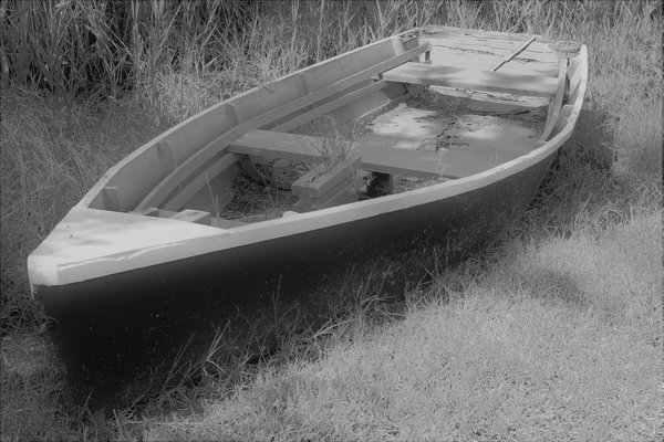 Abandoned Boat in the Weeds thumbnail