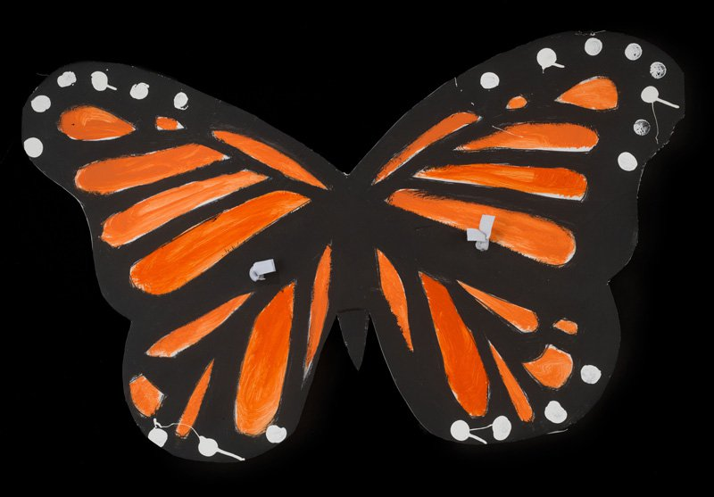Costume butterfly wings painted to resemble the pattern of monarch butterflies