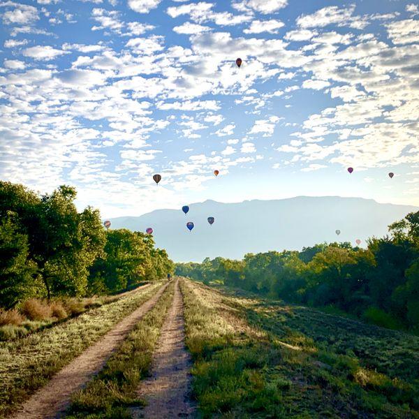 Hot Air balloons fronting the Sandia Mountains thumbnail