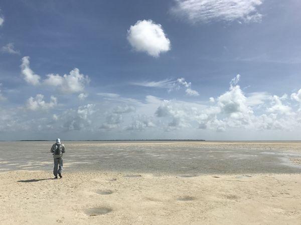 Joulters Key, Andros, Bahamas, wading the flats thumbnail