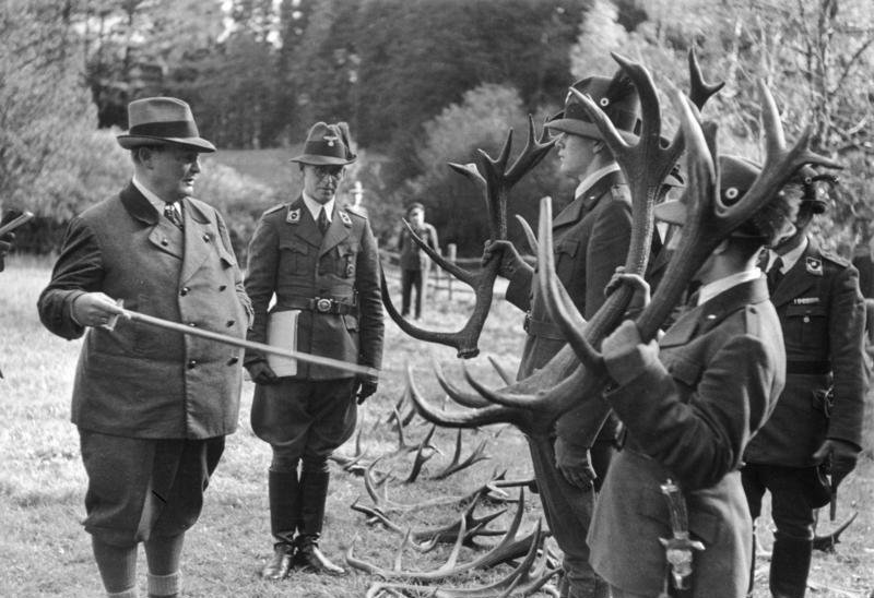 When the Nazis Tried to Bring Animals Back From Extinction