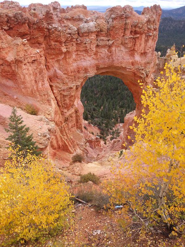 Bryce Canyon Oct 5 2018 Natural Bridge Overlook thumbnail
