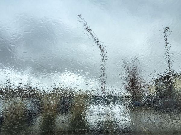 Rainy Windshield thumbnail
