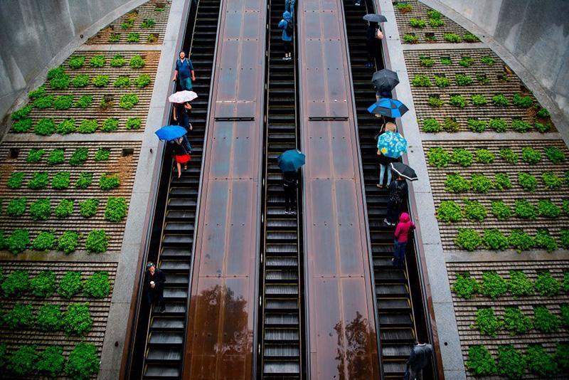 Dupont Circle escalator.jpg