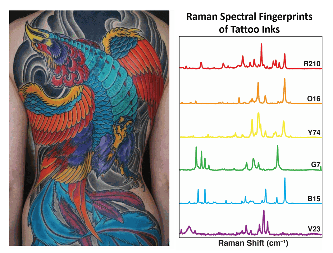 Could Tattoo Ink Be Used to Detect Cancer?
