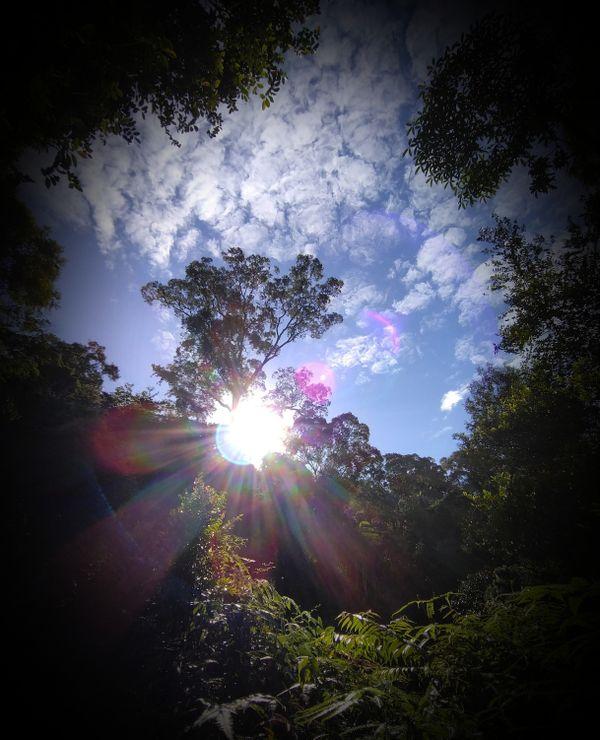 Sunrise from Maxwell hill in Taiping, Perak thumbnail