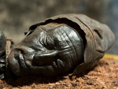 """Bogs are perhaps best known for preserving prehistoric human remains. One of the most famous examples of these so-called """"bog bodies"""" is Tollund Man."""