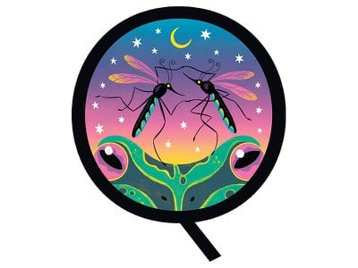 While mosquitoes can be pesky, they're an important part of the food chain.