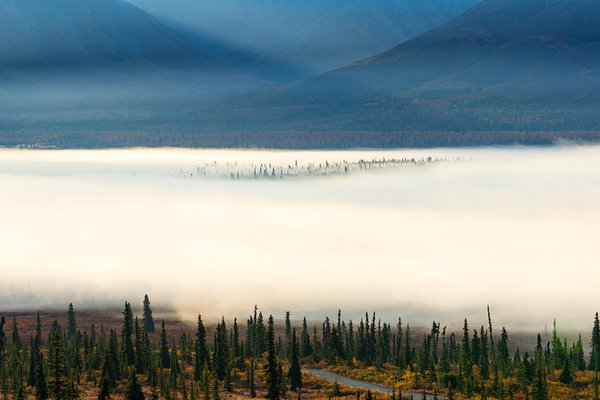 Alaska, autumn colors at sunrise thumbnail