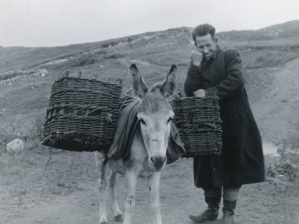 Man with a Donkey