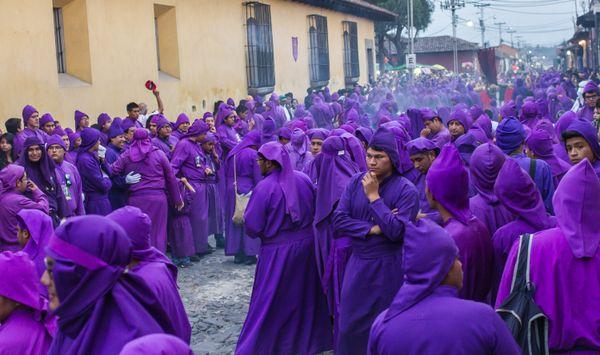 A Sea of Purple thumbnail