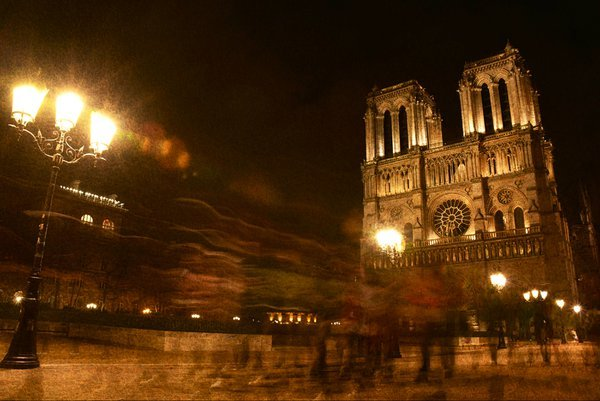 Notre Dame cathedral at night thumbnail