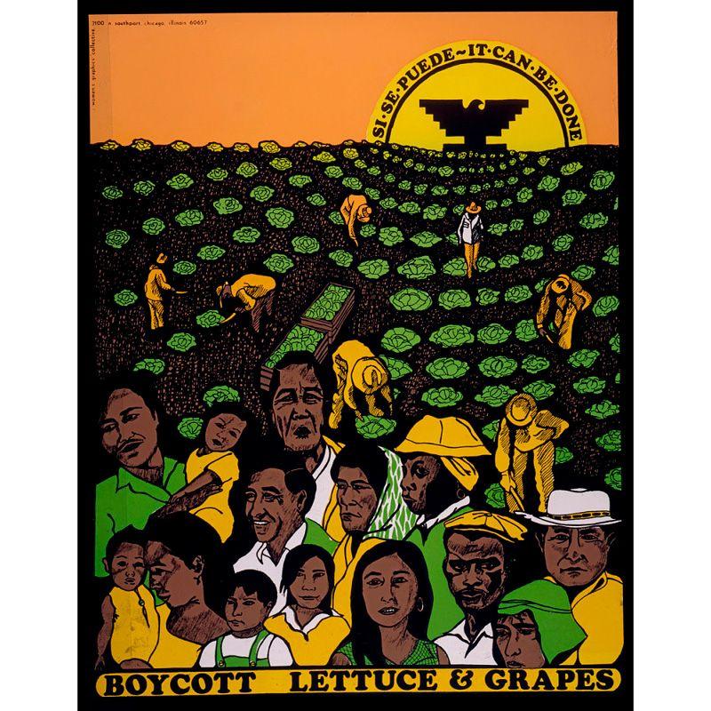 Boycott poster depicting workers in lettuce field