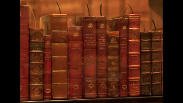 Preview thumbnail for The Books of Thomas Jeffersons Library