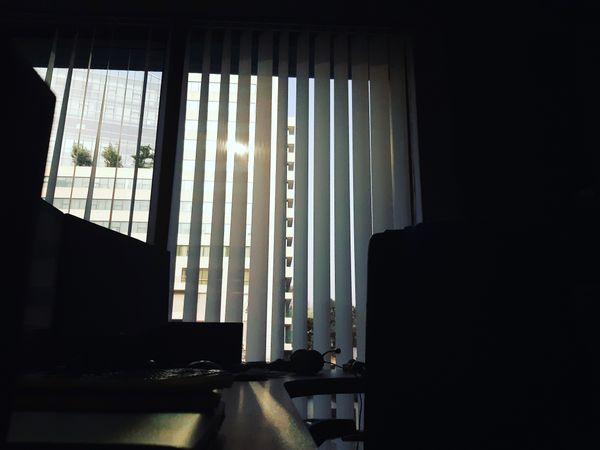 Sun Lights thumbnail