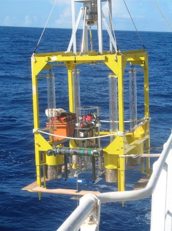 Nearly 8 Miles Down, Bacteria Thrive in the Oceans' Deepest Trench