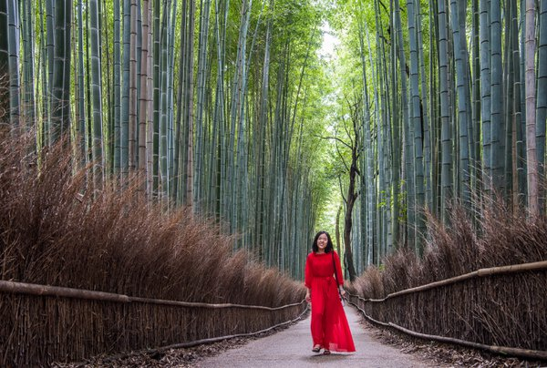 Woman in bamboo forest thumbnail