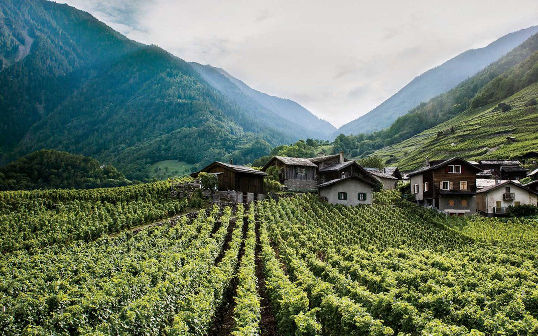 Your Next Favorite European Wine Region Isn't in France, Italy or Spain