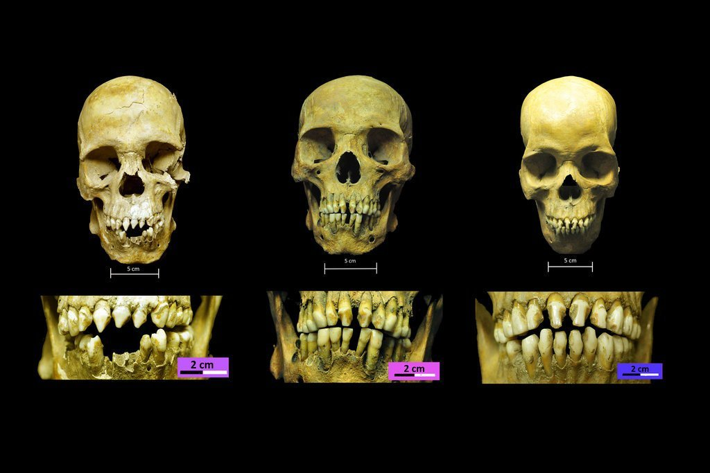 New Analysis Suggests These Three Men Were Among the First Africans Enslaved in the Americas