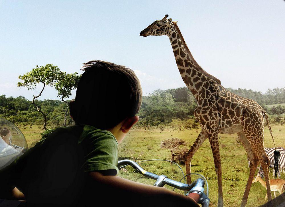 08_13_2014_zoo.jpg