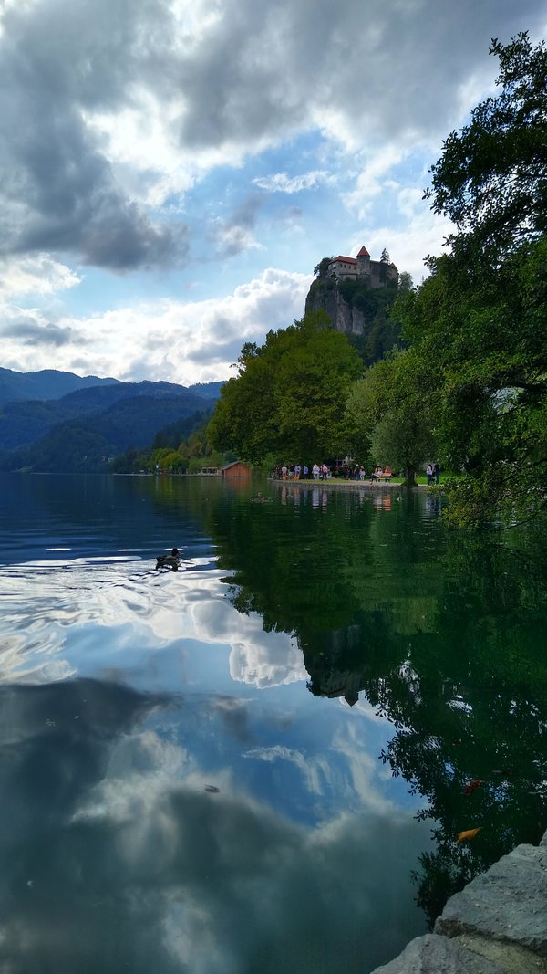 Mirroring Lake Bled thumbnail